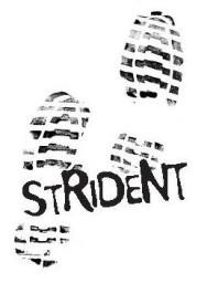 strident logo