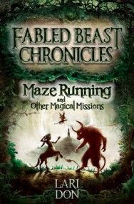 Maze Running and Other Magical Missions image