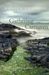 Gathering Carrageen image