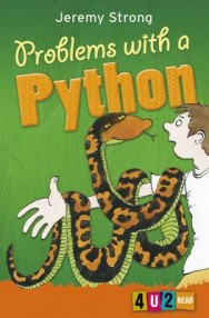 Problems with a Python image