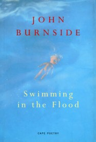Swimming in the Flood image