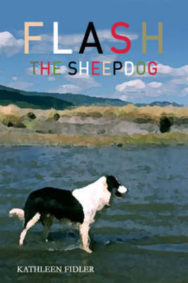 Flash the Sheepdog image