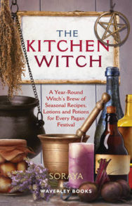 The Kitchen Witch: A Year-round Witch's Brew of Seasonal Recipes, Lotions and Potions for Every Pagan Festival image