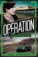 Operation Goodwood image