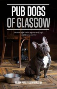 Pub Dogs of Glasgow image