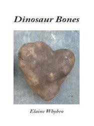 Dinosaur Bones image