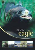Call of the Eagle image