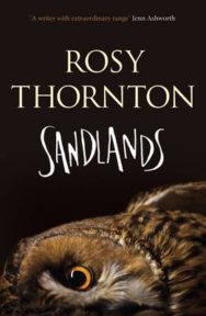 Sandlands image