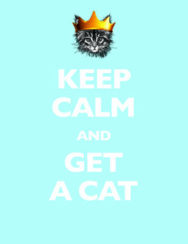 Keep Calm and Get a Cat image