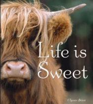 Life is Sweet image