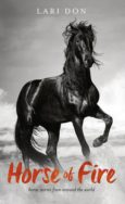 Horse of Fire: horse stories from around the world image