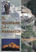 The Mountains Look on Marrakech: A trek along the Atlas Mountains image