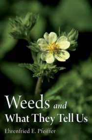Weeds and What They Tell Us image