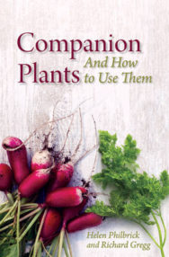 Companion Plants and How to Use Them image