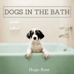 Dogs in the Bath image