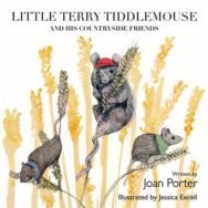 Little Terry Tiddlemouse and His Countryside Friends image