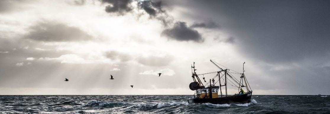 Whisky Island: A Visual Tour of Islay