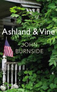 Ashland & Vine image