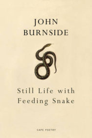 Still Life with Feeding Snake image