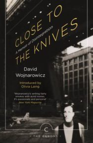 Close to the Knives: A Memoir of Disintegration image