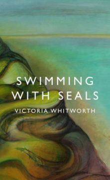 Swimming with Seals image