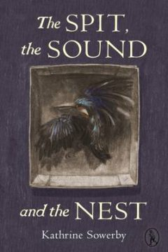 The Spit, the Sound and the Nest image
