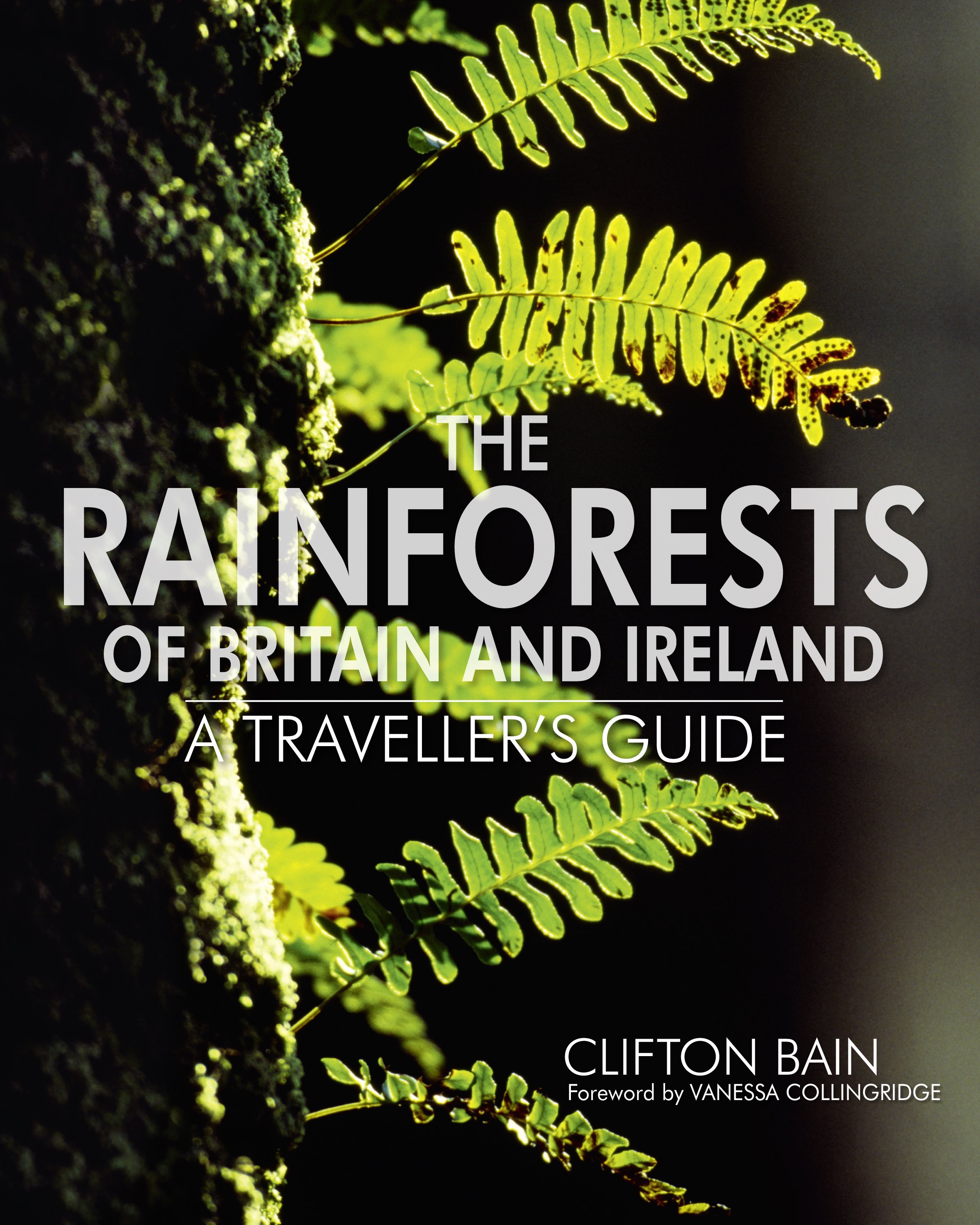 The Rainforests of Britain and Ireland