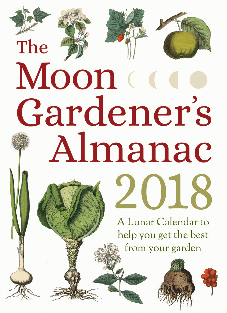What Is 'Moon Gardening' Anyway?