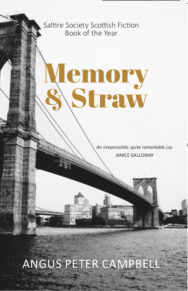 Cover of Memory and Straw paperback
