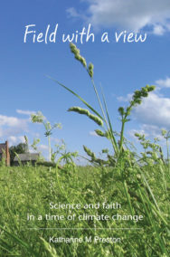 Field with a view - cover image
