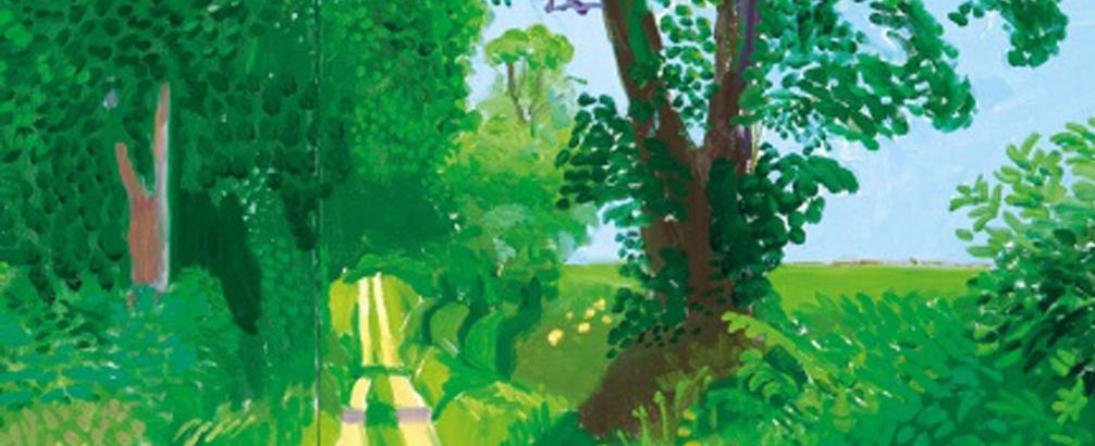 David Robinson Reviews: Summer